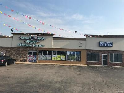 White Lake Twp Commercial For Sale: 9520 Highland Road