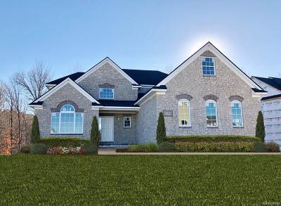 Lyon Twp MI Single Family Home For Sale: $525,000