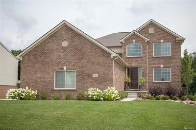 Oxford Single Family Home For Sale: 295 Indian Lake Road