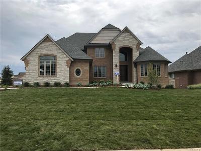 Green Oak Twp MI Single Family Home For Sale: $750,000