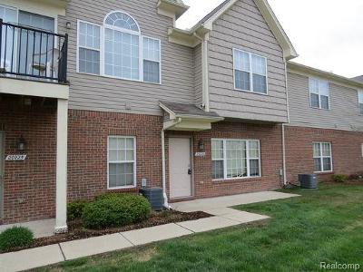 Brownstown Twp Condo/Townhouse For Sale: 20025 Hidden Oaks Drive