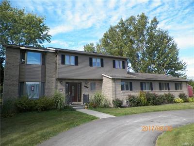 Canton Single Family Home For Sale: 6001 Pheasant Run