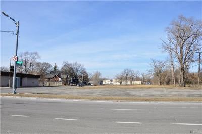 Detroit Residential Lots & Land For Sale: 4724 Mount Elliott Street