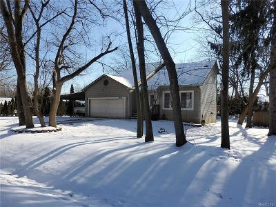 Commerce, Commerce Township, Commerce Twp Single Family Home For Sale: 769 Polvadera Street