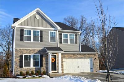 Macomb County, Oakland County Single Family Home For Sale: 545 Knollwood Drive