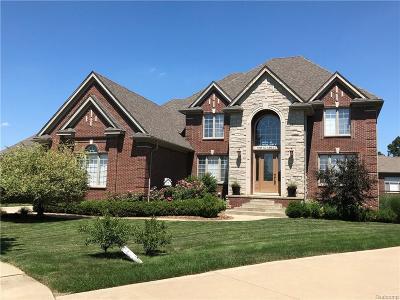 Washington Twp MI Single Family Home For Sale: $574,500