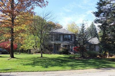 Lake Orion, Orion Twp, Clarkston, Independence Twp, Oxford Single Family Home For Sale: 6491 Pine Valley Road