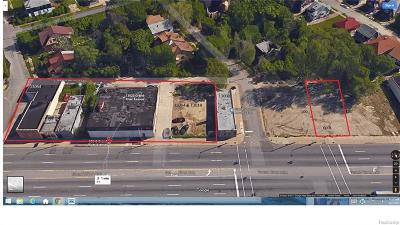 Commercial For Sale: 13020 Grand River Ave