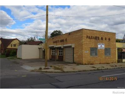 Commercial For Sale: 13054 Grand River Avenue