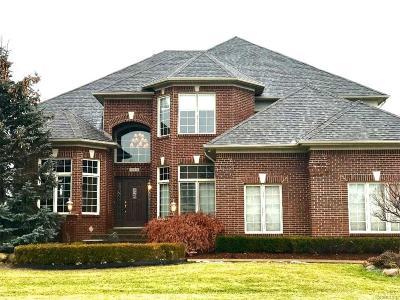 Washington Twp MI Single Family Home For Sale: $595,000
