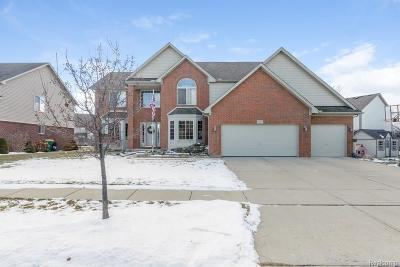 Brownstown Twp Single Family Home For Sale: 17277 Sugar Maple Drive