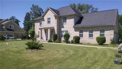 Southfield Single Family Home For Sale: 25149 Ravine Street