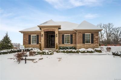 Novi Single Family Home For Sale: 47720 Alpine Drive