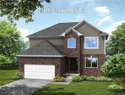 Auburn Hills Single Family Home For Sale: 2195 Knollwood Street