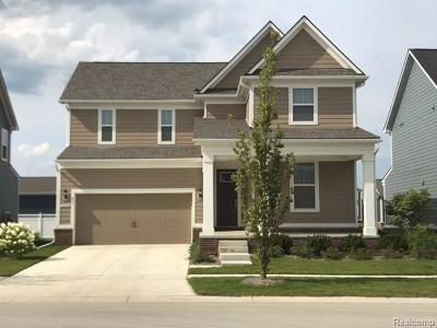 Canton Single Family Home For Sale: 958 Harrison