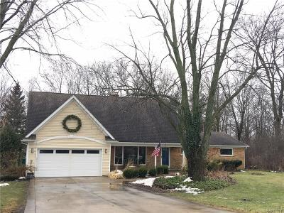 Novi Single Family Home For Sale: 49235 W Eleven Mile Road