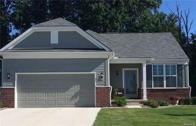 Brownstown, Brownstown Twp Single Family Home For Sale: 27152 Montague Drive