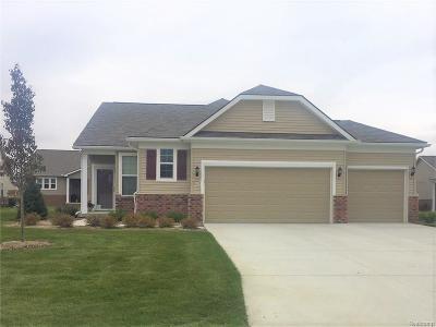 Brownstown Twp Single Family Home For Sale: 24316 Leelanau Lane