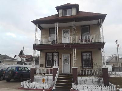 Hamtramck Multi Family Home For Sale: 2370 Danforth Street