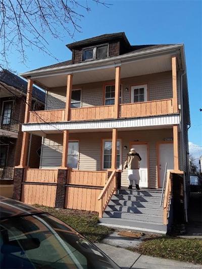 Hamtramck Multi Family Home For Sale: 2035 Belmont Street