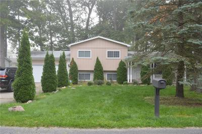 West Bloomfield Twp Single Family Home For Sale: 1735 Rosedale Street