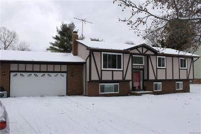Waterford Single Family Home For Sale: 1098 Bielby Street