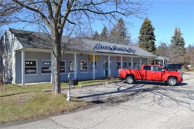 Clarkston, Independence Twp, Springfield Twp Commercial For Sale: 5897 Dixie Highway