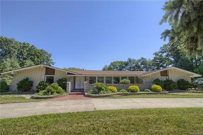 Clinton Twp Single Family Home For Sale: 38296 E Horseshoe Drive