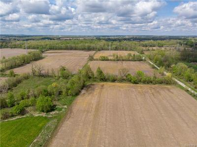 Ray Twp Residential Lots & Land For Sale: 29 Mile Road