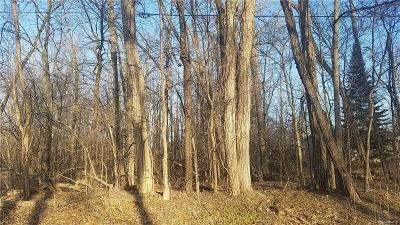 Commerce Twp Residential Lots & Land For Sale: 1-A Benstein Road N