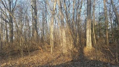 Commerce Twp Residential Lots & Land For Sale: 2-B Benstein