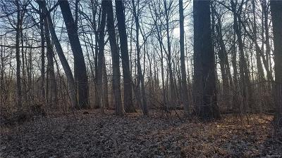 Commerce Twp Residential Lots & Land For Sale: 6-F Benstein