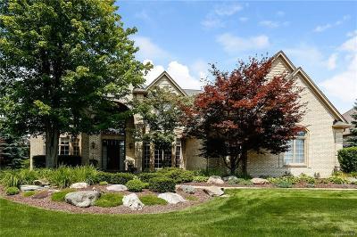 Rochester Single Family Home For Sale: 1424 Pebble Ridge Drive