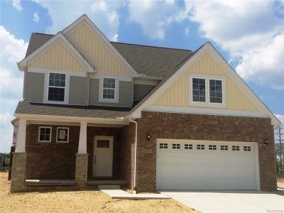 Westland Single Family Home For Sale: 36950 Everett Dr