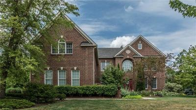 Novi Single Family Home For Sale: 25704 Shoreline Drive