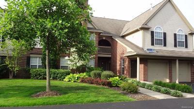 Novi Rental For Rent: 28326 Carlton Way Drive #6