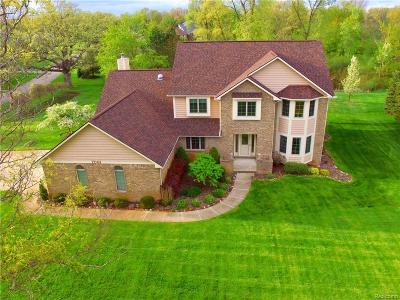 White Lake Single Family Home For Sale: 7061 Cedar Creek Dr Drive