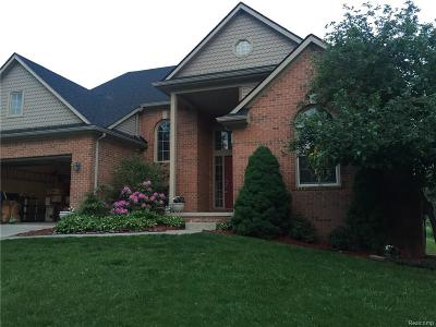 Novi Single Family Home For Sale: 28826 Hearthstone Drive