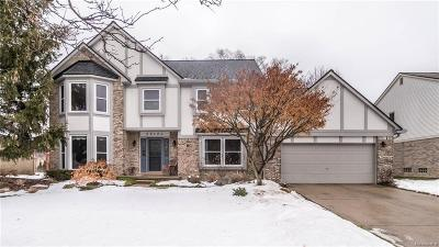 Novi Single Family Home For Sale: 25424 Anthony Drive