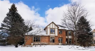Rochester Hills Single Family Home For Sale: 3286 Kilburn Road W