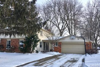 Northville Single Family Home For Sale: 41871 Rayburn Drive