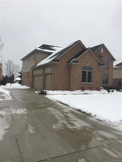 Novi Single Family Home For Sale: 47436 Valencia Circle