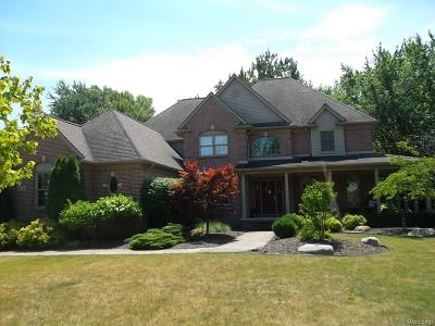 Grosse Ile, Gross Ile, Grosse Ile Twp Single Family Home For Sale: 8453 Grays Drive