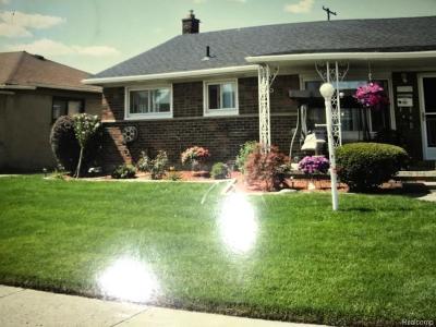 Westland Single Family Home For Sale: 29742 Julius Boulevard