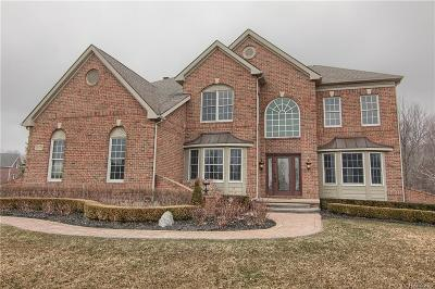 Novi Single Family Home For Sale: 25770 Shoreline Drive
