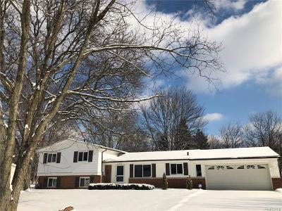 West Bloomfield, West Bloomfield Twp Single Family Home For Sale: 7227 Stonebrook Road