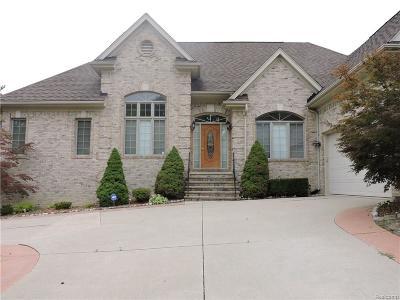 Auburn Hills Single Family Home For Sale: 3169 Paramount Lane