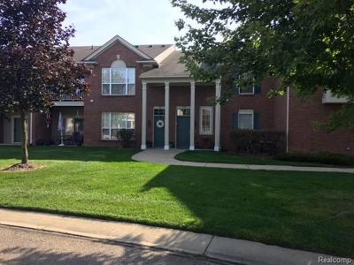 Commerce Twp Condo/Townhouse For Sale: 5202 Chesapeake Circle #55