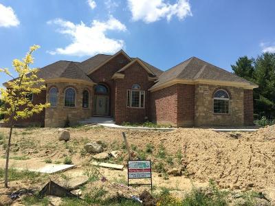 Novi Single Family Home For Sale: 29799 Martell Court