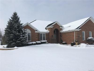 Huron Twp Single Family Home For Sale: 28898 Liparoto Boulevard